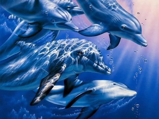 мумий тролль дельфины аккорды