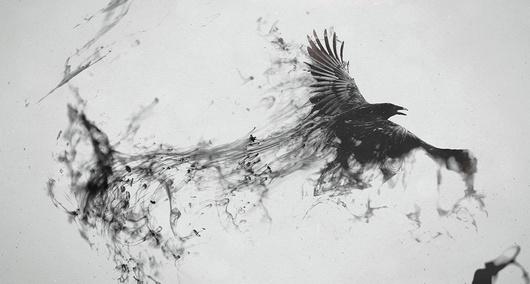 бутусов черные птицы