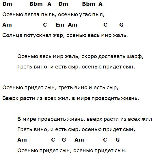 сын васильева сплин